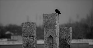 Tarihi mezar ve mekanlarıyla Ahlat
