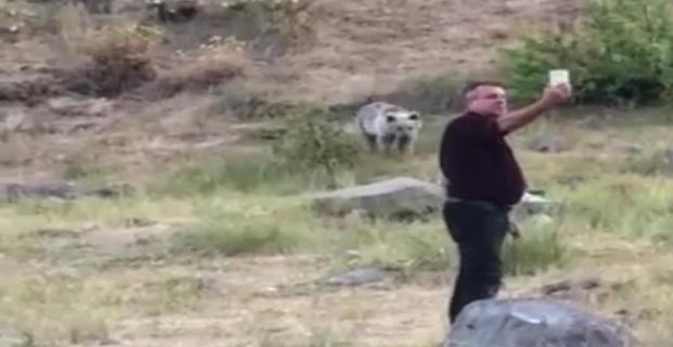 Tatvan'da anneleri ölen yavru ayıları elleriyle beslediler