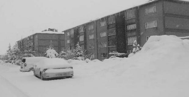 Bitlis'te 287 köy yolu ulaşıma kapandı