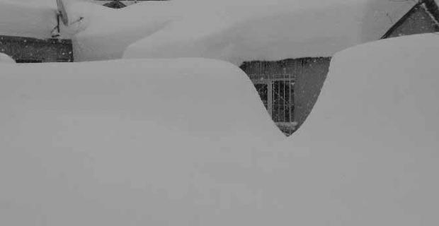 Bitlis'te tek katlı evler kardan kayboldu