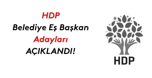 HDP belediye eşbaşkan adaylarından bazılarını açıkladı!