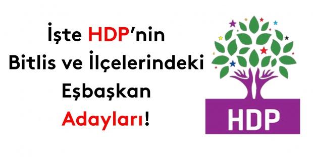 İşte HDP Bitlis ve ilçeleri eşbaşkan adayları!
