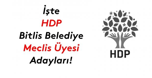 İşte HDP Bitlis Belediye meclis üyesi adayları listesi!