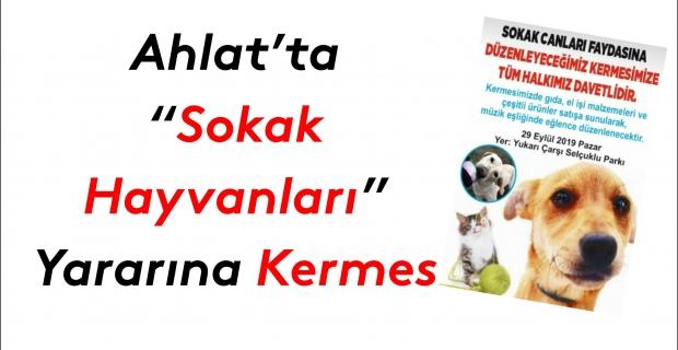 Ahlat'ta 'Sokak Hayvanları' için kermes düzenlenecek