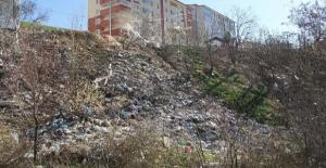 Bitlis Belediyesinin çalışmaları devam ediyor