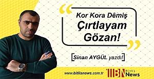 Bitlis#039;te AK Parti#039;li vekilin...