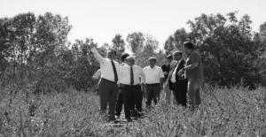 Ahlat'ta 'Cumhurbaşkanlığı Köşkü' için yer tespiti yapıldı