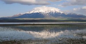 Adilcevaz'da bir bölge 'kesin korunacak hassas alan' ilan edildi