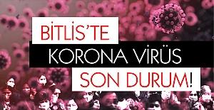 Korona virüsü salgınında Bitlis'te son durum!